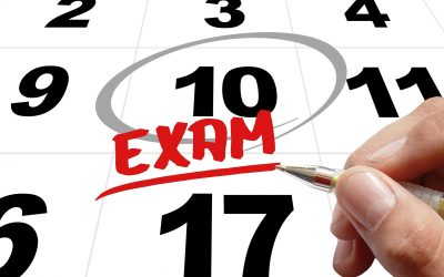 Exam Essays: Breathe Deeply, Plan Thoughtfully, and Write Clearly