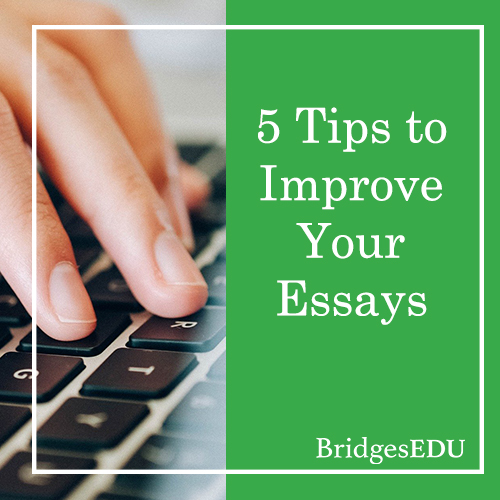 5 Tips to Improve Essay Writing Skills